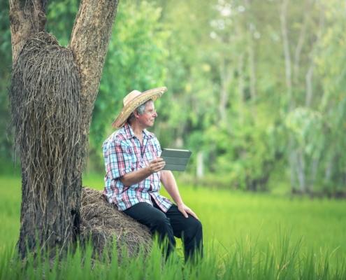rural farmer using digital technology
