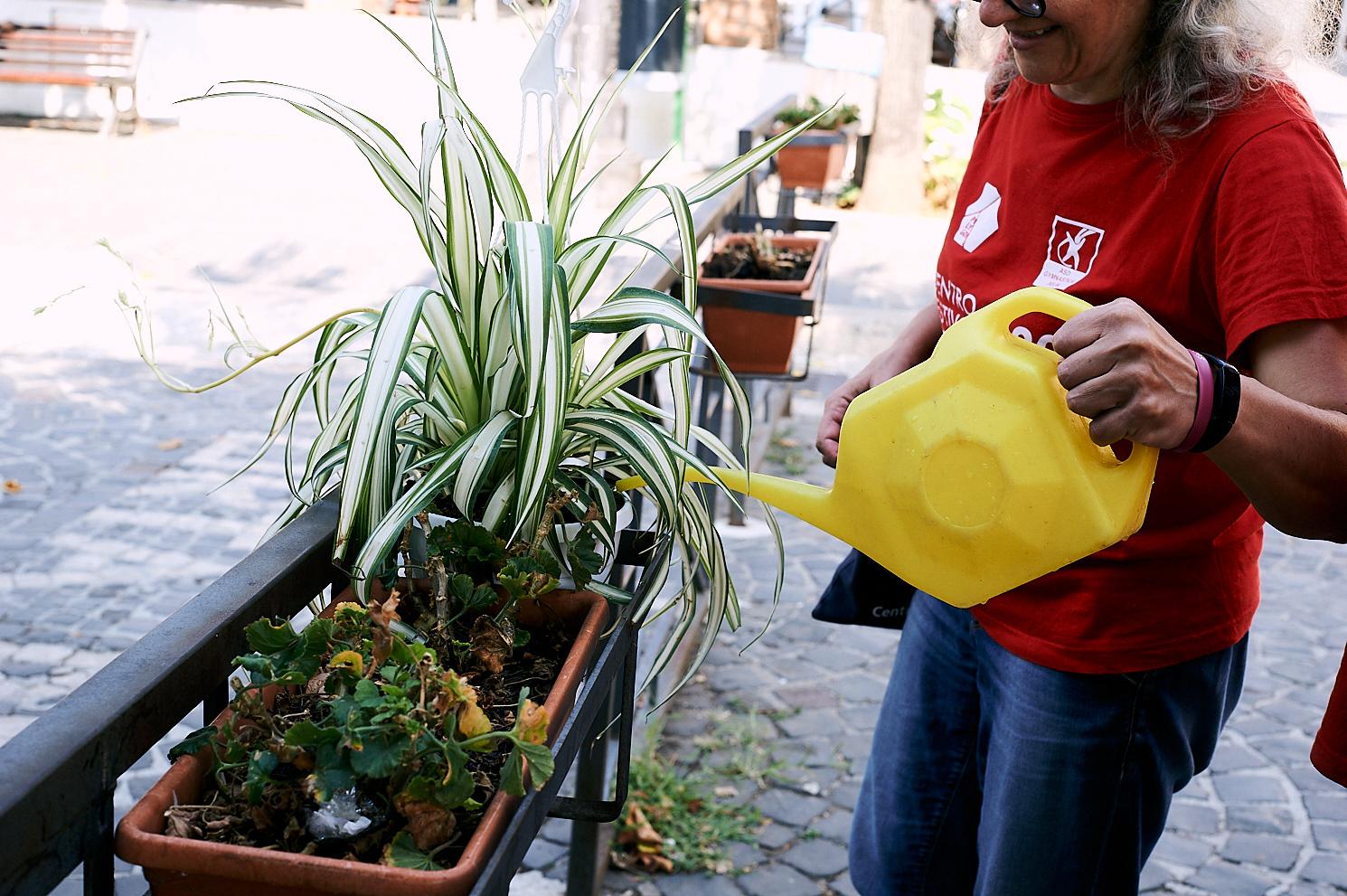 gestione delle aree verdi urbane